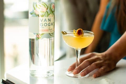 Virtual Summer Cocktail Hour with The Cocktail Bandits and Van Gogh Vodka
