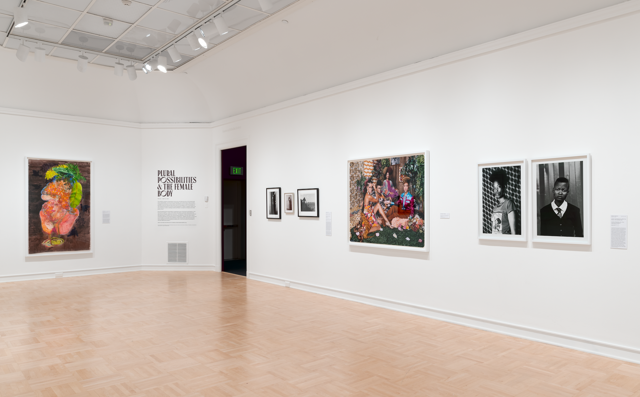Virtual | Curatorial Perspective: 'Plural Possibilities & the Female Body' at the Henry Art Gallery